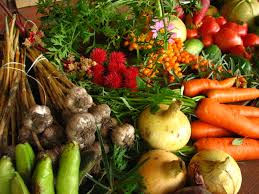 winter vegetable